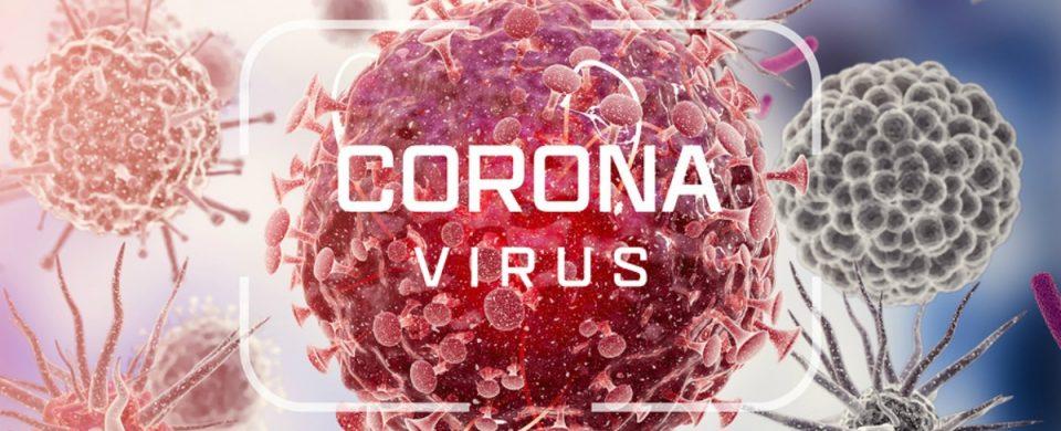 Elder Care in La Jolla CA: Corona Virus